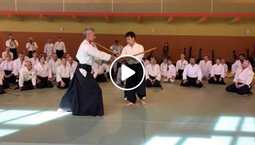Video Seminar 2019 Nomura Naomi
